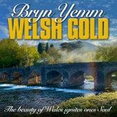 Welsh Gold by Bryn Yemm
