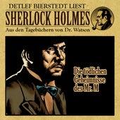 Die tödlichen Geheimnisse des Mr. M. (Sherlock Holmes : Aus den Tagebüchern von Dr. Watson) von Sherlock Holmes