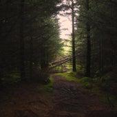 Woodlands van NAV