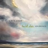 Apodosis by Meriem Ben Amor