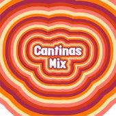 Cantinas Mix by Various Artists