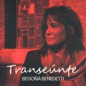 Transeúnte by Begoña Benedetti
