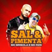 Sal & Pimenta de Mc Brisola