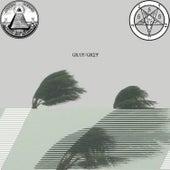 Gray/Grey de $uicideboy$