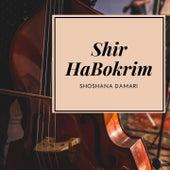 Shir HaBokrim de Shoshana Damari