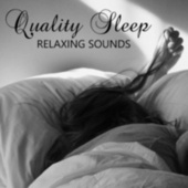 Quality Sleep Relaxing Sounds by Various Artists