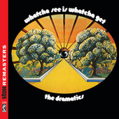 Whatcha See Is Whatcha Get [Stax Remasters] van The Dramatics