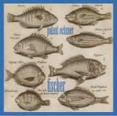 Fischer von Patent Ochsner
