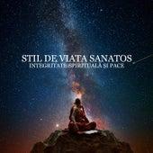 Stil de Viata Sanatos (Integritate Spirituală și Pace, Yoga și Muzica Reiki, O Călătorie Revitalizantă a Sufletului și a Corpului) by Various Artists