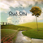 All Things Bright And Beautiful de Owl City