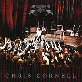 Scar On The Sky by Chris Cornell