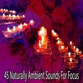 45 Naturally Ambient Sounds for Focus by Lullabies for Deep Meditation
