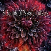 54 Sounds of Peaceful Lullabye de Best Relaxing SPA Music