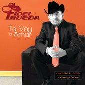 Te Voy A Amar de Fidel Rueda