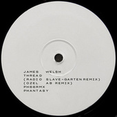 Thread (Remixes) by James Welsh