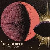 What To Do EP de Guy Gerber