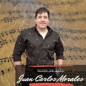 Hecho en Casa by Juan Carlos Morales