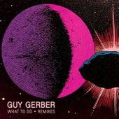 What To Do (Remixes) von Guy Gerber