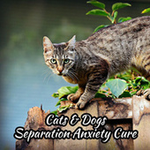 Cats & Dogs Separation Anxiety Cure fra Jingle Cats