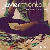 Missed Senses by Javier Montoliu