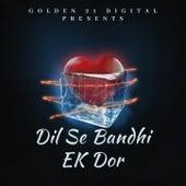 Dil Se Bandhi EK Dor by Naveen