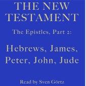 The Epistles, Pt. 2: Hebrews, James, Peter, John, Jude (The New Testament) by Paul