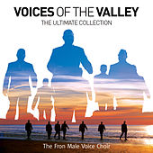 Voices Of The Valley: The Ultimate Collection (Standard CD) by Fron Male Voice Choir