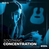 Soothing Concentration 004 by Various Artists