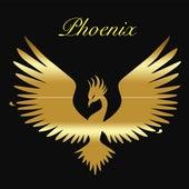 Grupo Phoenix de Petén by Phoenix