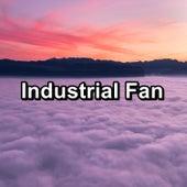 Industrial Fan by S.P.A