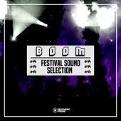 Boom: Festival Sound Selection, Vol. 14 von Various Artists