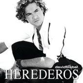 Herederos de David Bisbal