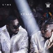 Cesar de Black M x GIMS