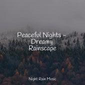 Peaceful Nights - Dreamy Rainscape de Sol y Lluvia