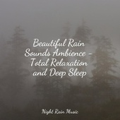 Beautiful Rain Sounds Ambience - Total Relaxation and Deep Sleep by Sleeping Baby Songs