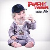 Mister gAGa von Peach Weber