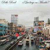 ¿Qué Hago en Manila? de Pablo Read