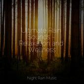 Ultimate Rain Sounds - Relaxation and Wellness de Musica Reiki