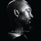State Of Flux by Mr. G