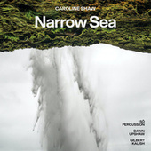 Caroline Shaw: Narrow Sea von Dawn Upshaw