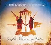Auf den Dächern von Berlin von Ute Freudenberg
