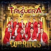Corridos (En Vivo) by Banda Triguera