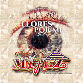 Ya No Llores por Mi by Grupo Mijez