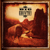 The Compulsion Years: Demos by Big Country
