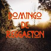 Domingo De Reggaeton von Various Artists