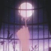 Foule sentimentale de Fleur de Lune
