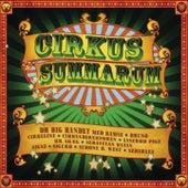 Cirkus Summarum (2009) von DR Big Band