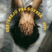 Sertanejo Pra Sofrer von Various Artists