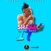 Shake It fra Najee