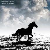 Wild Horses de Michael Zucker